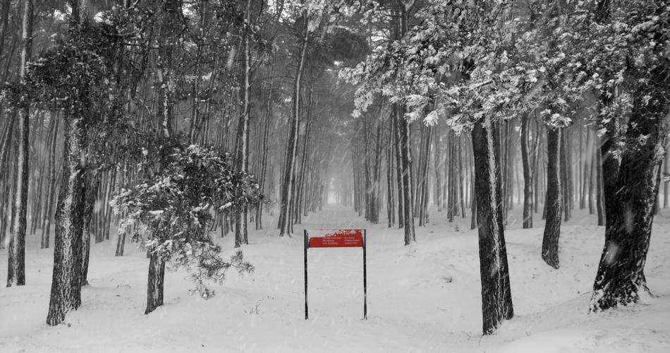 Vimy-snow-sign